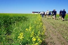 Rob Stones Farm - Field Visit